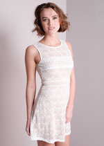 Contrast Cut Work Lace Skater Mini Dress White