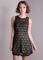 Contrast Cut Work Lace Skater Mini Dress Black