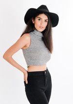 Heidi Basic Roll Neck Crop Top Grey
