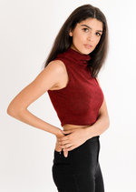 Heidi Basic Roll Neck Crop Top Red