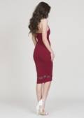 Eve Burgandy Dress with Mesh Panel