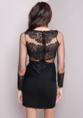 Sheer Lace Detail Long Sleeved Bodycon Black