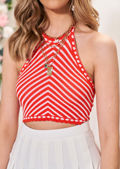 Knitted Halterneck Striped Patterned Trimmed Hem Crop Top Red