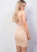 Plunge Neck Floral Embroidered Mesh Backless Bodycon Dress Beige