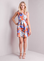 Blue Floral Print Fit and Flare Skater Dress In Orange
