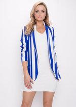 Bold Stripe Blazer Blue