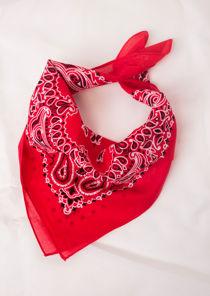 Paisley Print Bandanna Head Scarf Red