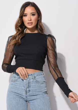 Organza Ribbed Mesh Puff Long Sleeve Crop Top Black