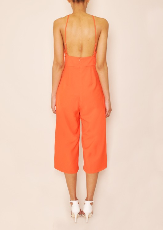 data/2015-/April 2/Lexi Halter neck Keyhole Jumpsuit back.jpg